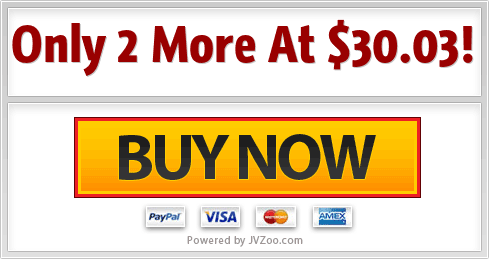 Online Income Formula  Downsell Pack with PLR