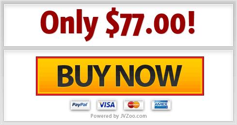 CopyMatic DFY Profitable Copywriting Agency setup