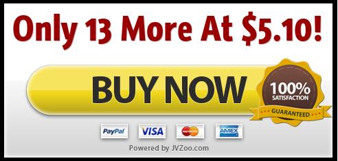 Wordpress Extreme Bargain Mega Pack II
