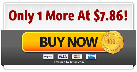 The Niche Marketing Kit - Massive Traffic Package Special