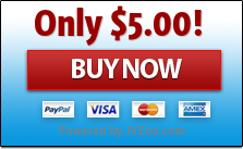 Instant Product Publisher - Business and Website Traffic