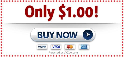 Fast Success Online Video Coaching + MEGA BONUSES (SPECIAL DISCOUNT) 0.01$ TRIAL