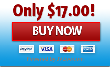 Countdown Dynamite Wordpress Plugin - single site licence